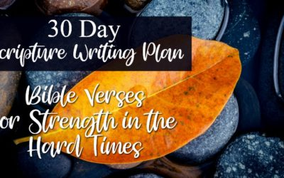 Bible Verses for Strength in the Hard Times